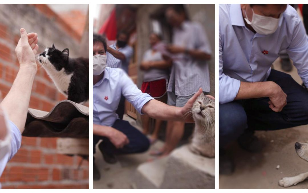 Jilmar, o amigo dos pets: gestão petista fará história na luta pelos direitos dos animais